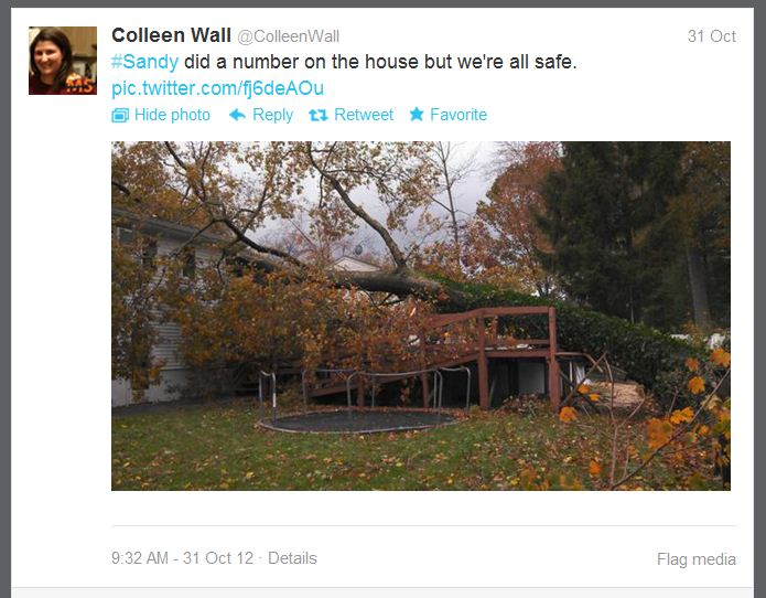 12_10_31_wall_treehouse