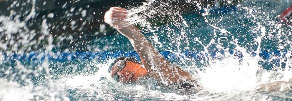 mount swim